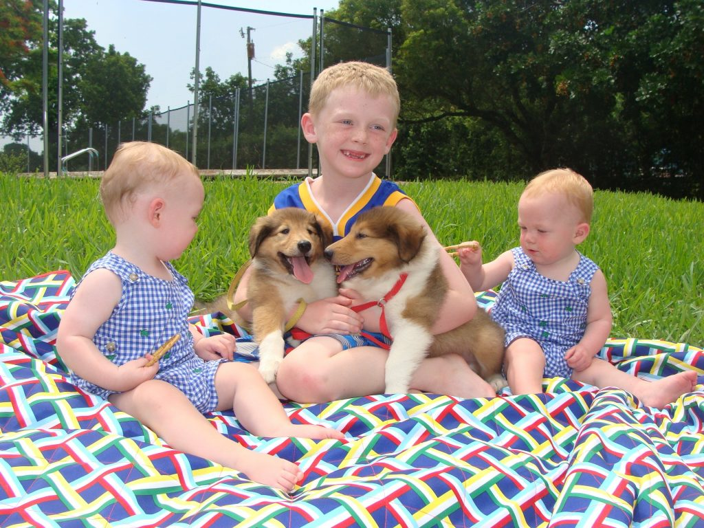 Kids with Collie Puppies